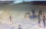 俄MMA高手街头打死举重冠军 对方倒地后猛击头部