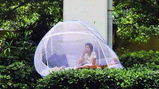 中山28岁女孩 桥下搭蚊帐吃喝