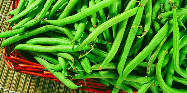 珠海发布食安白色预警 四季豆一定要煮熟煮透!