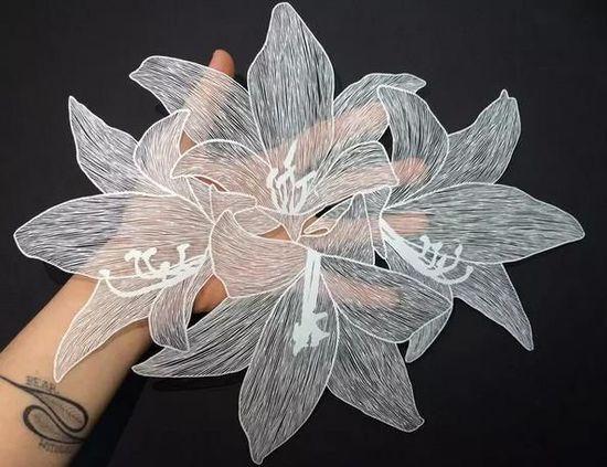 靠一张纸火遍全球?在她的手上白纸有无数种可能!