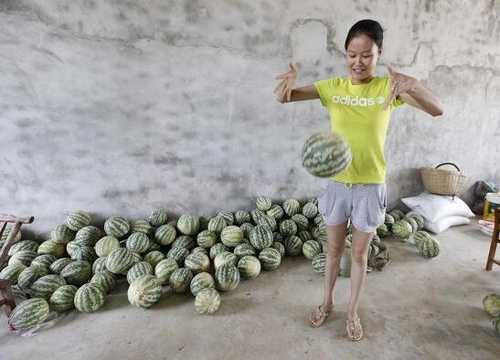 湖北现奇葩西瓜:弹性像皮球,味道像冬瓜,究竟是啥