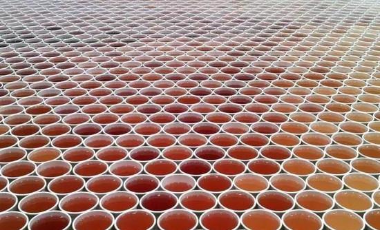 他们将66000杯水放在地上,接下来的画面超震撼