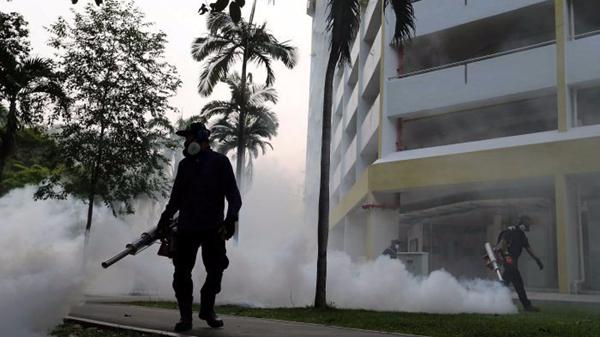 新加坡本土感染寨卡病毒人数增至56人