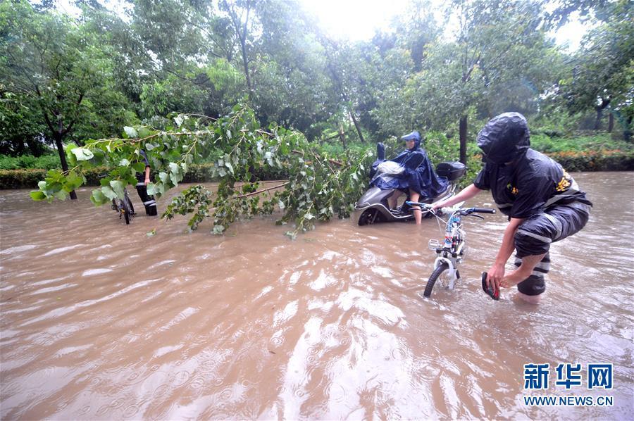 """台风""""鲇鱼""""福州肆虐 城区水浸树木被吹倒"""