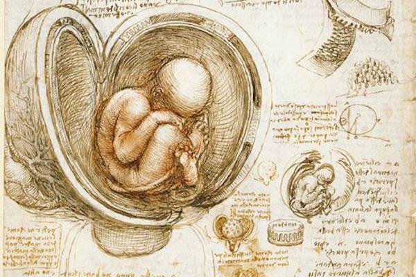 人类基因设计:创造还是毁灭