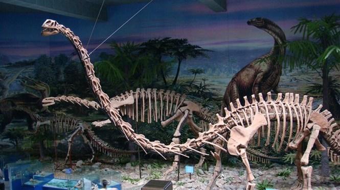(原标题:恐龙繁衍之谜要到哪里找答案) 随着考古发现的日益增多,恐龙,这个与我们素未谋面的2亿年前的地球霸主在人们面前逐渐变得鲜活生动起来。尽管如此,关于恐龙仍有很多待解的谜题,而恐龙究竟是如何进行传宗接代的就是其中之一。 继今年6月底公布琥珀中的古鸟类标本后,12月9日,中国地质大学(北京)博士邢立达与加拿大萨斯喀彻温省皇家博物馆教授瑞安麦凯勒团队又爆出一个更加惊人的消息:他们在琥珀中发现了有史以来第一件恐龙标本(尾部)。它是人类迄今为止发现的最鲜活的恐龙形态。邢立达如是说。 随着考古发现的