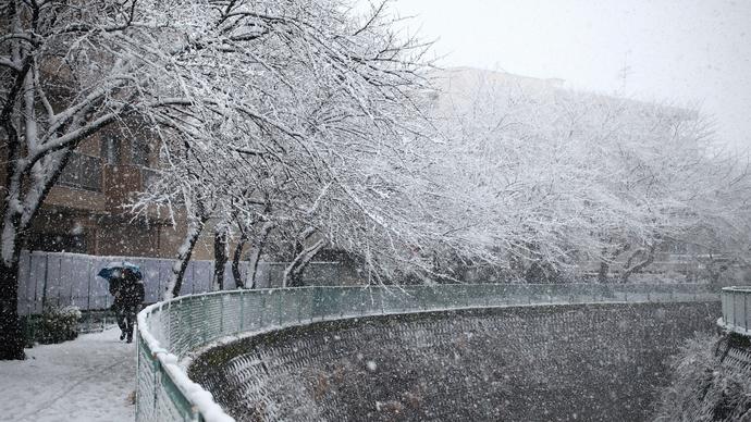 日本多地大雪纷飞传灾情 至少3人死亡300人伤