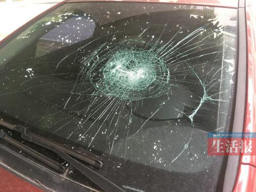 男子连砸7辆车喊想坐牢:在医院呆得闷了出来透透气