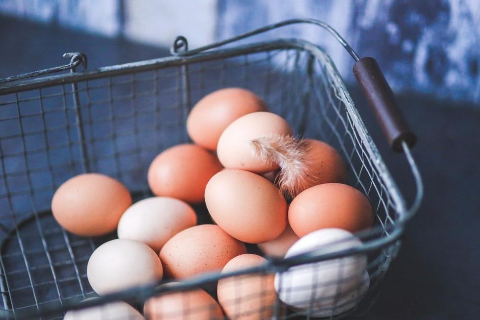 鸡蛋也能人造? 专家说难度成本都很高