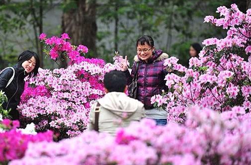 广州阳光增多回暖 明天起气温重回20℃+