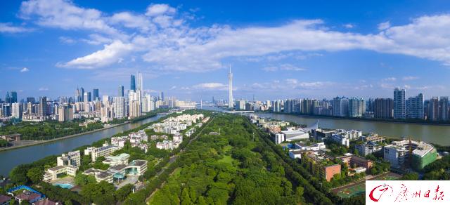 广州靓爆镜:路在林中 林在城中