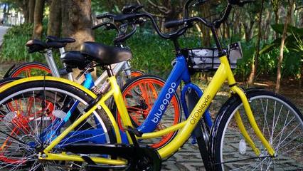 300元vs3000元:揭秘共享单车成本背后的竞争逻辑