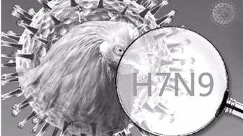 深圳报告今年首个H7N9疫情死亡病例 清远新增2例