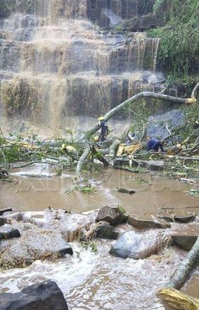 加纳一瀑布景区大树被闪电击倒 16名游客殒命当场