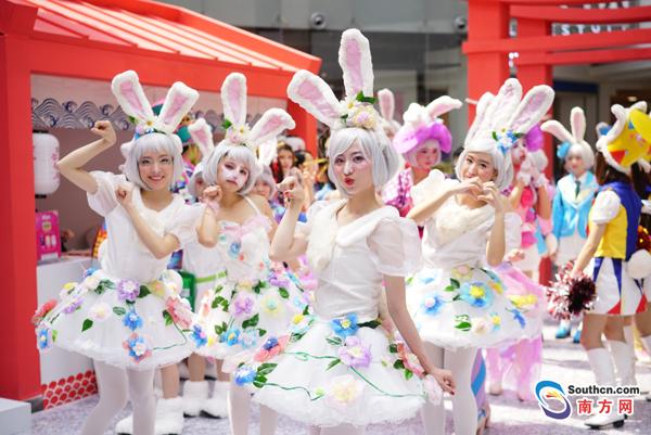 """她们都""""疯""""了!近千只兔女郎萌翻广州"""