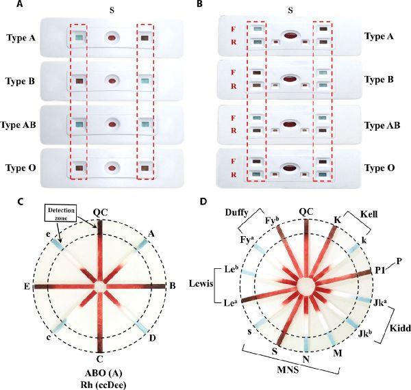 中国科学家发明试纸 30秒可验血型