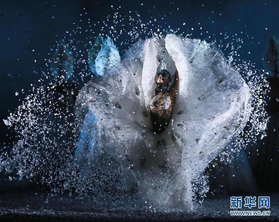 杨丽萍出演《孔雀之冬》 表达生命的循环与真谛