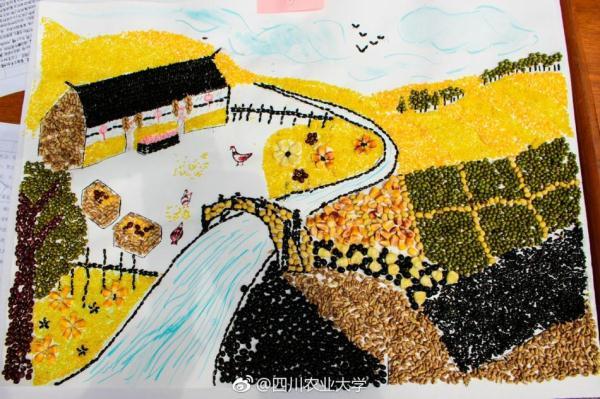 川农大学生用种子作画 栩栩如生引人大赞