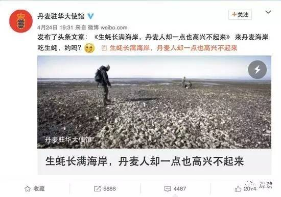 真有华人去挖丹麦生蚝?当事人称挖少了:下次还去