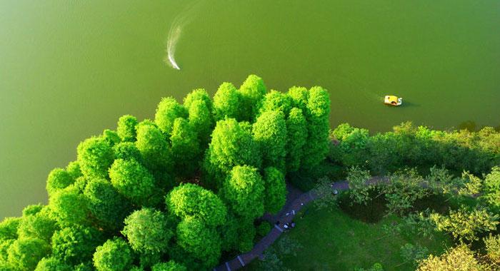 """穿越""""云山珠水""""生态绿轴 俯瞰印象麓湖"""