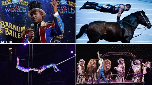 美国玲玲马戏团谢幕 表演146年后终走入历史