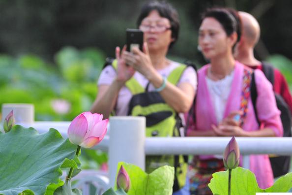 又可以出门浪了!广州结束阴雨天气 公园里欢歌笑语