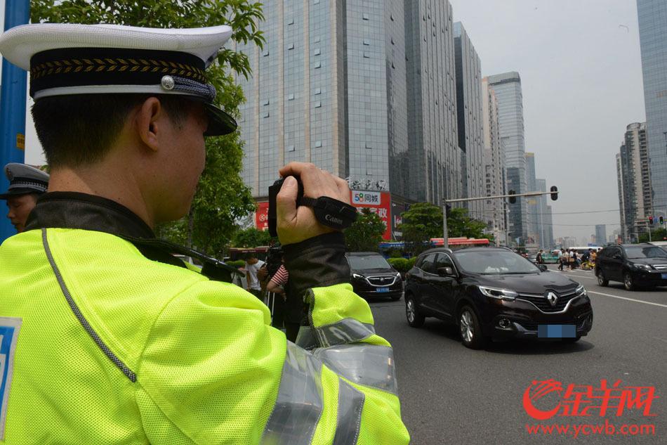 不礼让行人!开罚! 广州交警整治不文明交通违法行为