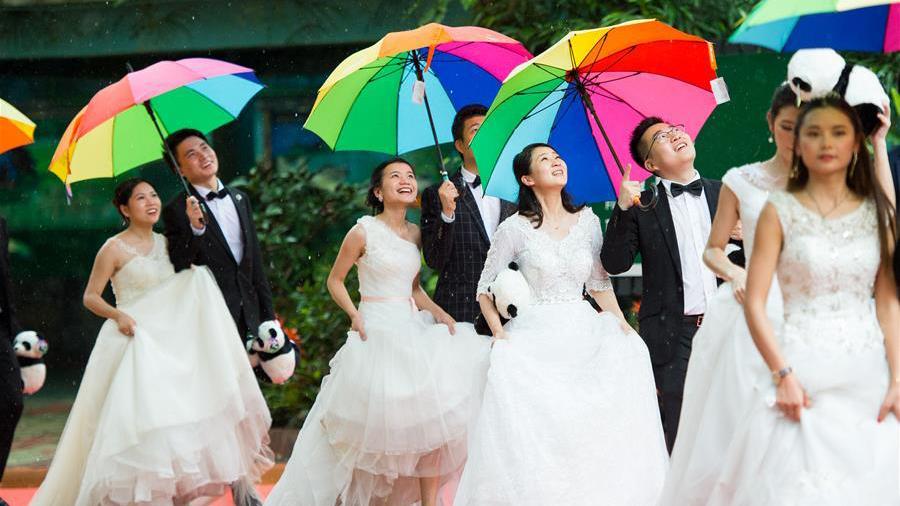 227对新人广州长隆参加缆车集体婚礼