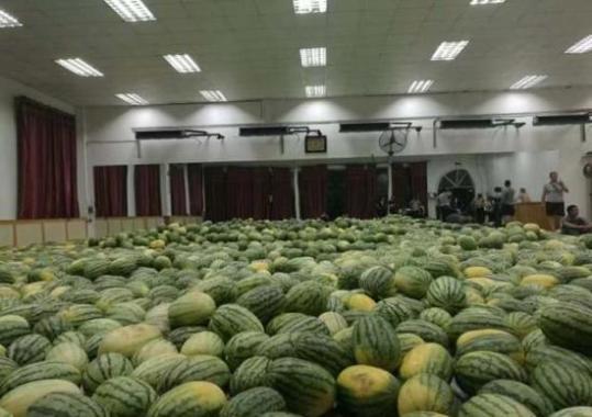 贫困毕业生家中西瓜滞销 学校狂购26吨请师生吃瓜