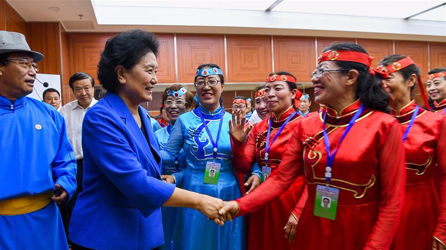 刘延东率中央代表团二分团赴赤峰慰问各族干部群众