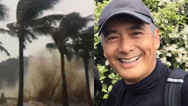 神秘男子冒台风砍树清路 没想到竟是周润发