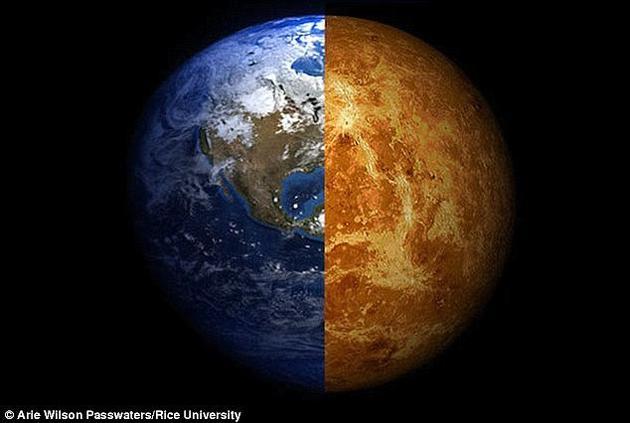 远古金星或存浅海孕育生命:温度曾比地球还低