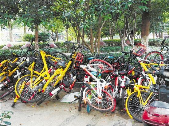 多地控制共享单车投放 杭州某单车企业被罚万元