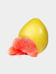优质驮娘柚 中国种植匠