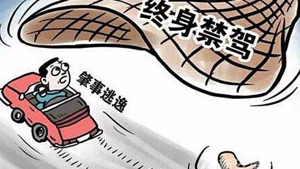 8月广东446人被终生禁驾!哪些行为会被处理?