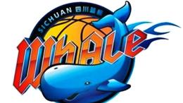 四川男篮新赛季剑指季后赛,培养本土年轻球员是重点