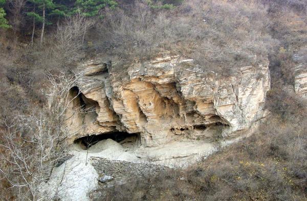 四万年前北京人DNA成功提取测序:第一个中国古人类基因组