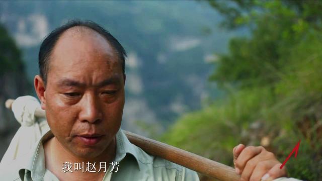 """党的十九大代表是怎样炼成的 赵月芳:""""猫路""""上的信使"""