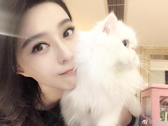 范冰冰日常吸猫却遭耍大牌 粉丝:竟然羡慕一只猫