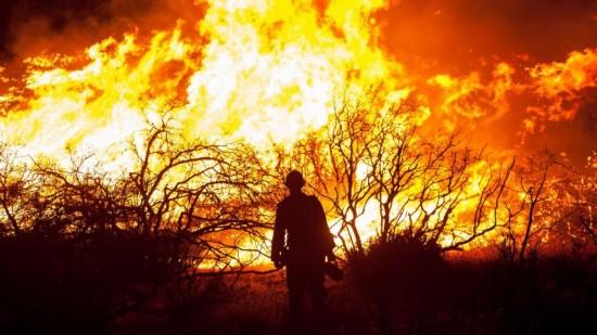 美国加州史上最致命野火已致38人死10万居民撤离