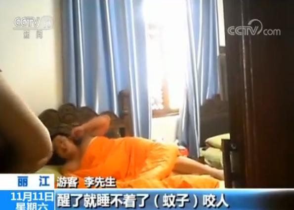游客丽江住店被蚊子咬醒 前台:是宠物 熏死要赔
