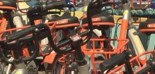 多家共享单车押金退款难 黄牛收取130至150元代退