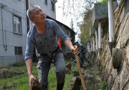 越来越干净的村庄。图片来源:中新网