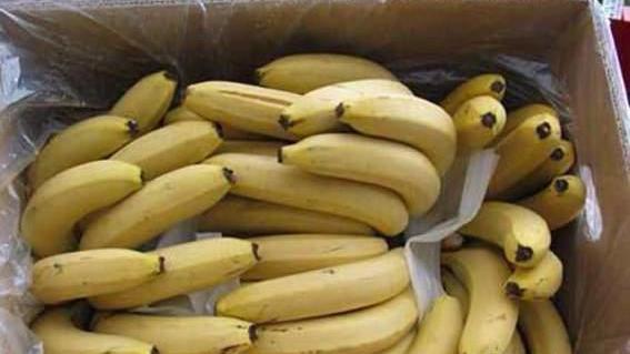 11月下旬50城主要食品平均价格:香蕉价格上涨