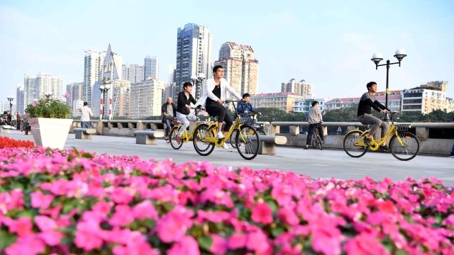 欢迎来到广州!听花开的声音,赴一场财富的盛宴