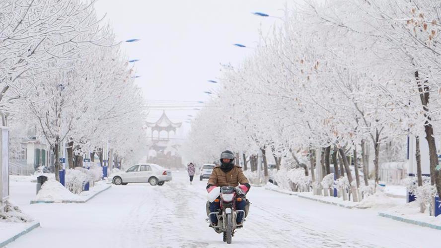 新疆兵团边境团场现雾凇景观