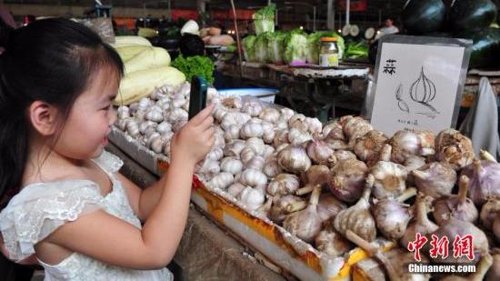 大蒜价格较去年同期下跌7.9% 库存量增加等成主因