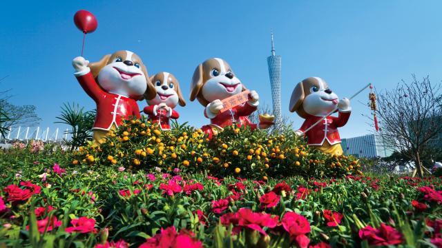 花开广州 春暖羊城