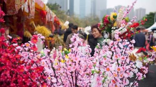 广州花市游客突破500万人次 成交金额达1.21亿元