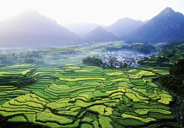 央视快评:让农业强起来 农村美起来 农民富起来